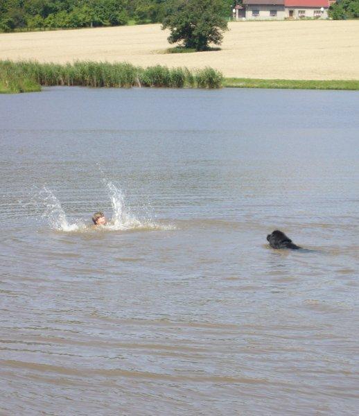 Mohutný bernardýn na zavolání POMOC skočil do vody